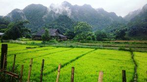 Le Vietnam et les paysages de l'Asie du Sud-Est