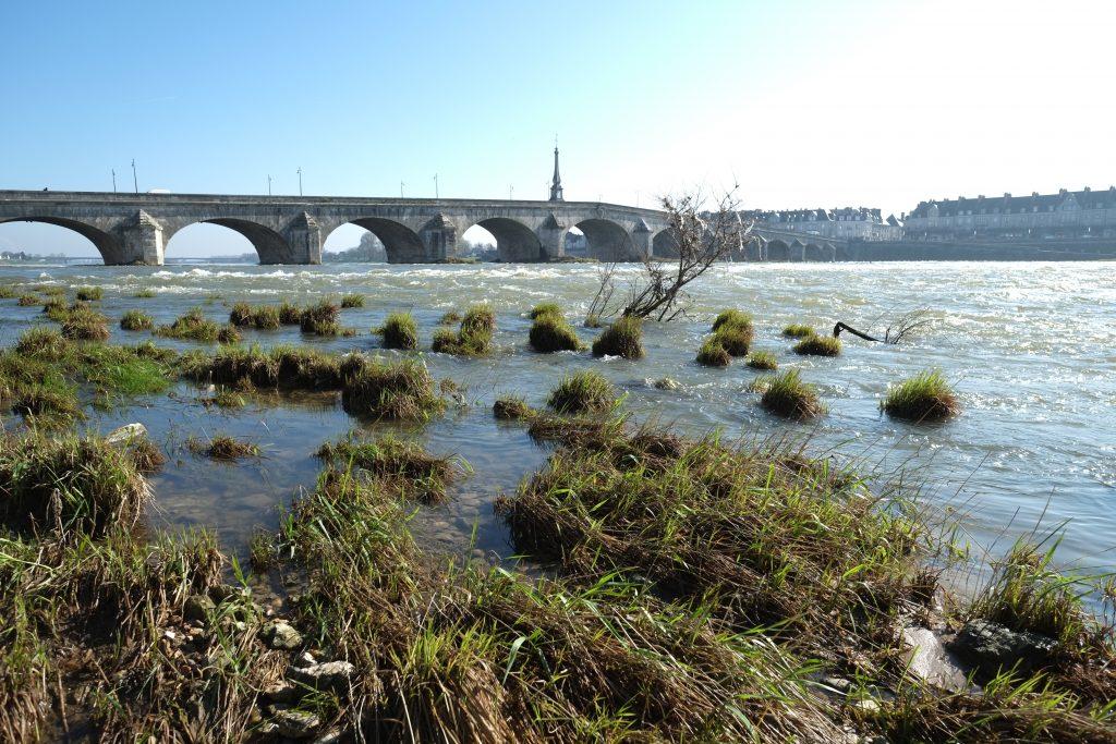 Sur les rives de la Loire à Blois