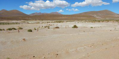 Vue imprenable sur les hauts plateaux andins de la Bolivie