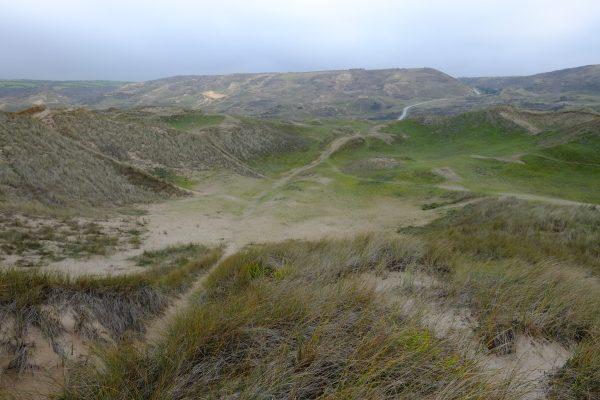 Les dunes de Biville, un ancien terrain militaire désafecté aujourd'hui accessibble au public
