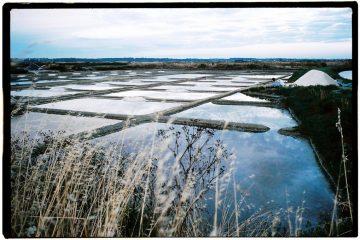Les marais salants un lieu naturel et un site très protégé