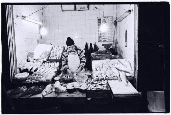 Un poissonnier au travail, Médina de Fès