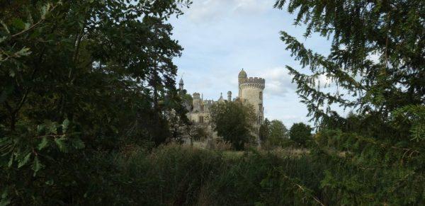 Derrière les bois on aperçoit l'arrière du château de la Mothe Chandeniers