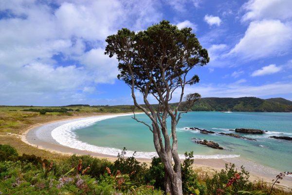 La Nouvelle Zélande l'un des plus beaux pays du monde