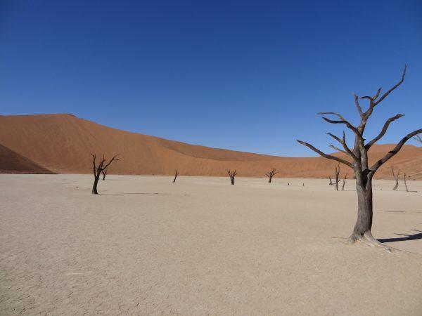 Sossusvlei, dans le désert du Namib, Namibie