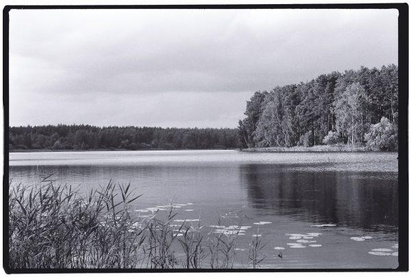 Un lac dans la région de Moscou, Russie