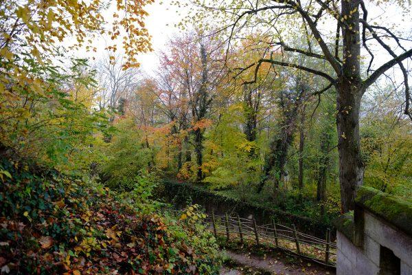 La forêt encercle pratiquement toute la ville de Pierrefonds