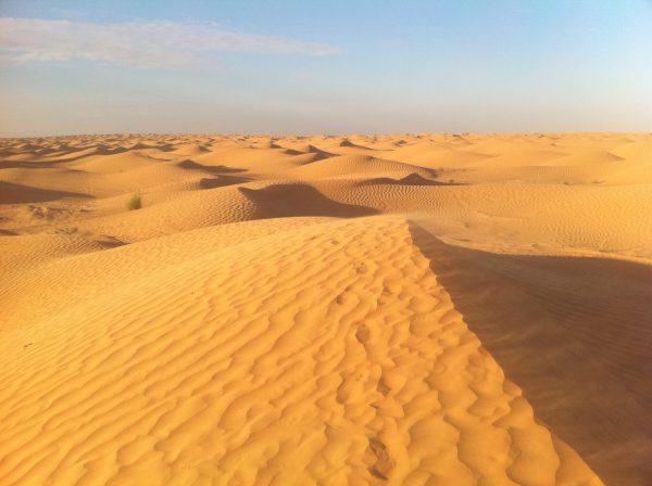 Le désert du Sahara en Tunisie