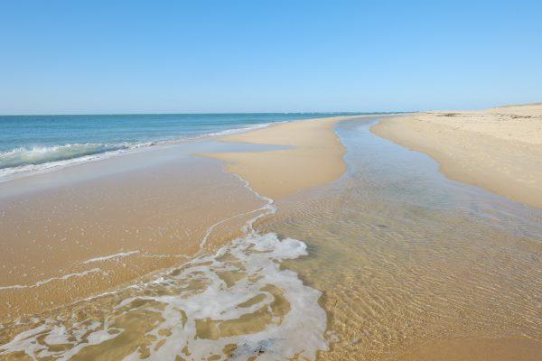 Se balader à marée basse l'une des choses à voir et à faire au Cap Ferret