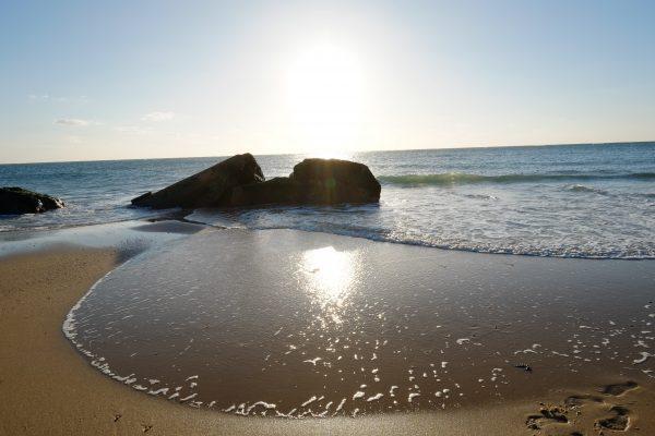 Quelques blokhaus émergeant à marée basse, Cap Ferret