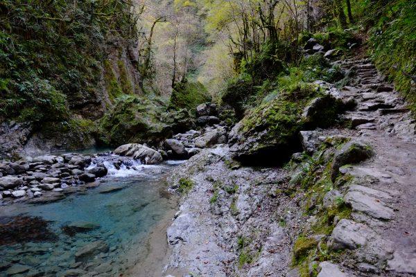 Un petit chemin longe la rivière, la Gave de Saint-Engrâce
