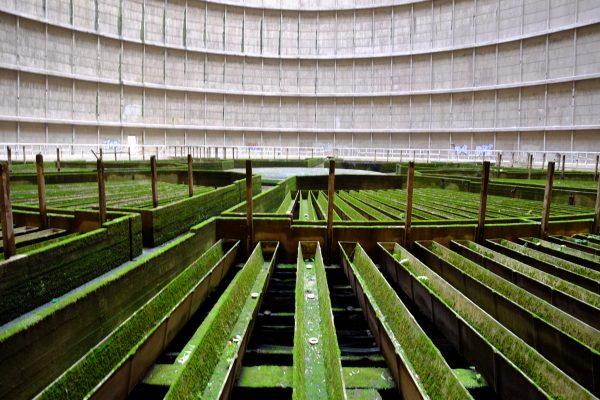 Visite des installations de la centrale thermique abandonnée de Charleroi en Belgique