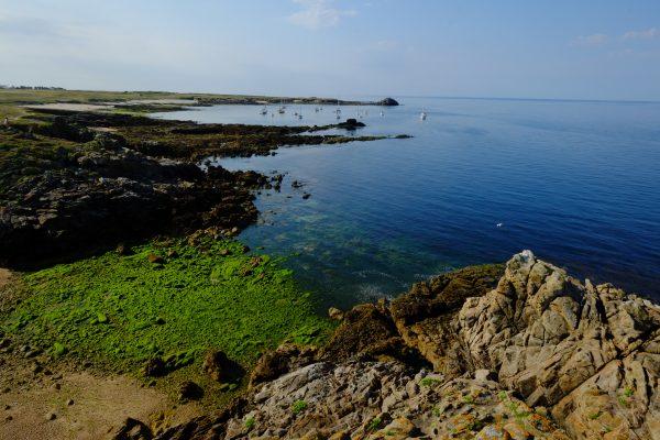 La côte d'Hoëdic une île oubliée