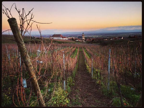 Le village de Saint-Hippolyte en Alsace