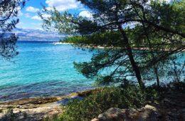 Sur les rives de la belle île de Mljet en Croatie