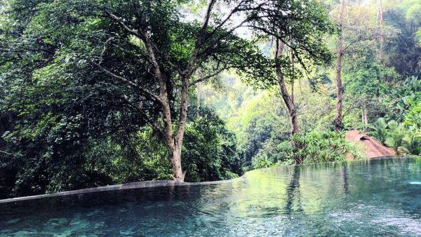 Une piscine à débordement perdu dans la jungle à Ubud