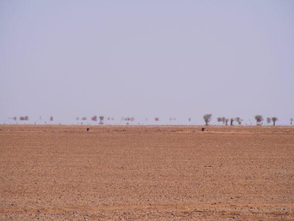 Arlit, l'une des zones les plus désertiques du Niger