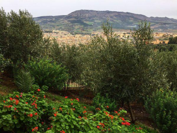 Dans le nord du Maroc et la belle ville de Fès