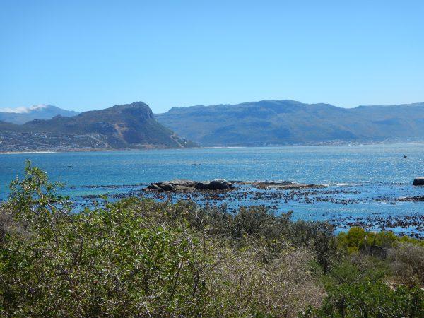 L'Afrique du Sud, quelque part dans la région du Cap