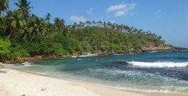 Conseils et bons plans pour un voyage au Sri Lanka