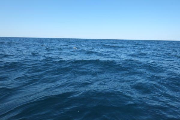 A qui appartiennent les mers et les Océans - Océan Atlantique