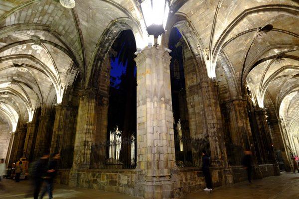 Le cloître de la cathédrale Sainte Croix de Barcelone