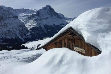 Un chalet perdu dans les Bernoises et dans les hauteurs de Wengen