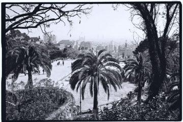 Un parc, un palmier et beaucoup de soleil, la martingale barcelonaise