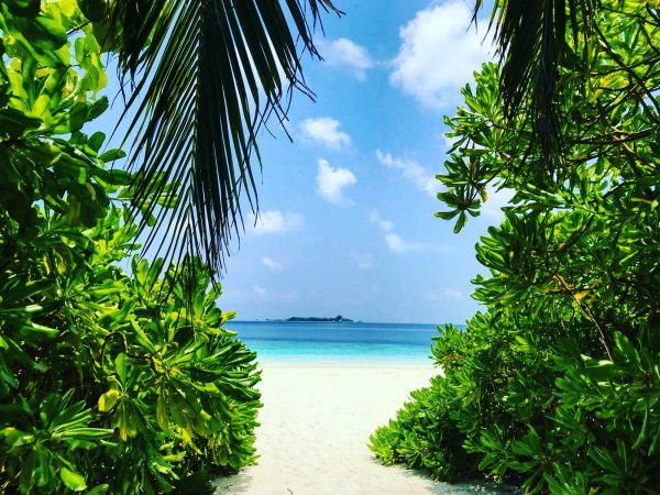 Au détour d'un chemin sur une île de l'archipel des Maldives