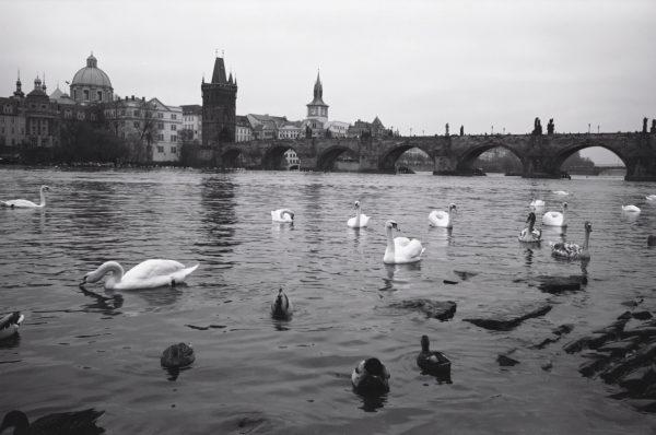 La Vltava et la belle ville de Prague