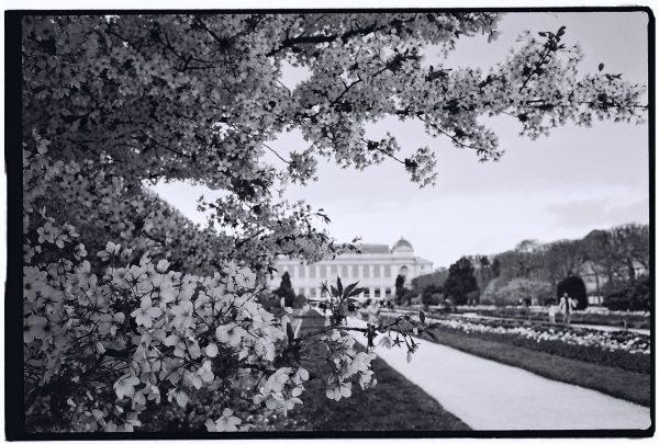 Le jardin des plantes l'un des plus beaux endroits de Paris