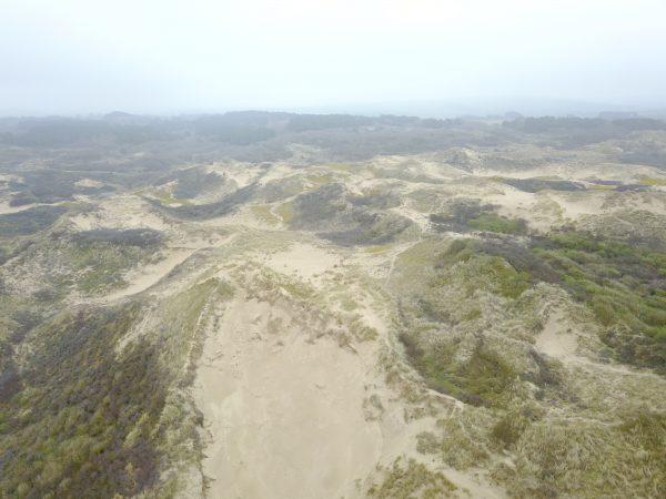 Les dunes de la Slack un jour de brume, l'un des plus beaux endroits du Pas de Calais