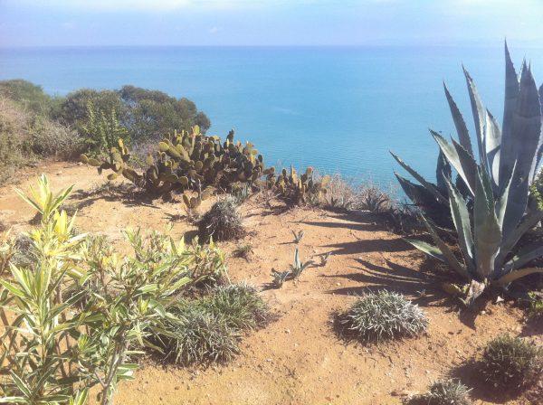 Où partir en mai ? Sur les côtes d'Afrique du Nord en Tunisie ou au Maroc.