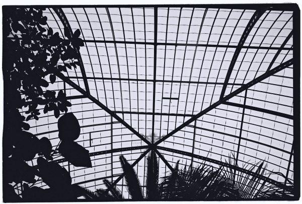 Un voyage exotique à l'intérieur des serres d'Auteuil à Paris