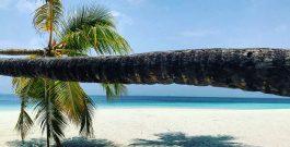 Escale de rêve aux Maldives
