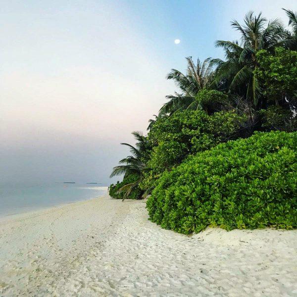 Une fin de journée paisible lors d'une escale de rêve Maldives