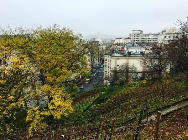 Vue depuis la butte Bergeyre sur Paris lors d'une après midi d'hiver