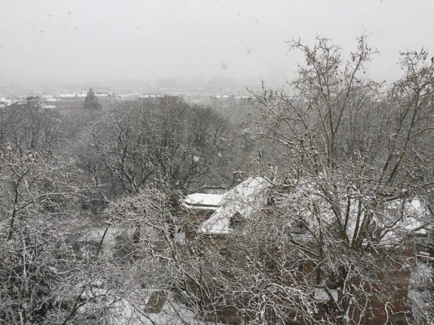 Le Parc des buttes Chaumont sous la neige