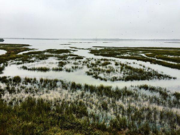 Le grand traict du Croisic à marée haute, l'anti chambre des marais salants