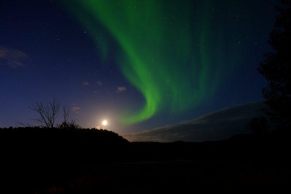Où voir des aurores boréales dans le monde