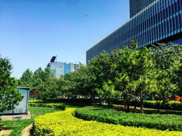 Promenade dans à Pékin