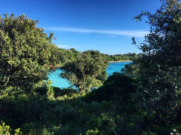 Silba, l'unne des plus belles îles de Croatie