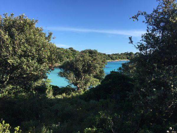 Silba, une superbe île croate