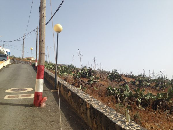 A la découverte du centre de l'île de Fuerteventura