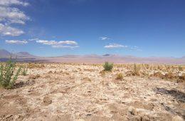 Aride et splendide, le désert d'Atacama au Chili
