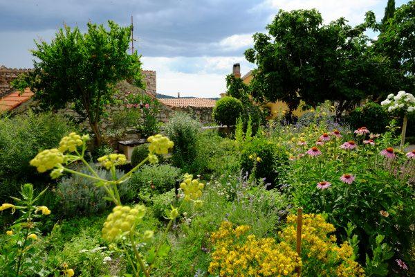 Le jardin Méditerranéen médiéval et le café Lovre