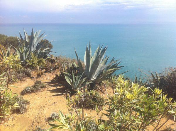 Une vue splendide depuis la Marsa dans le nord de la Tunisie