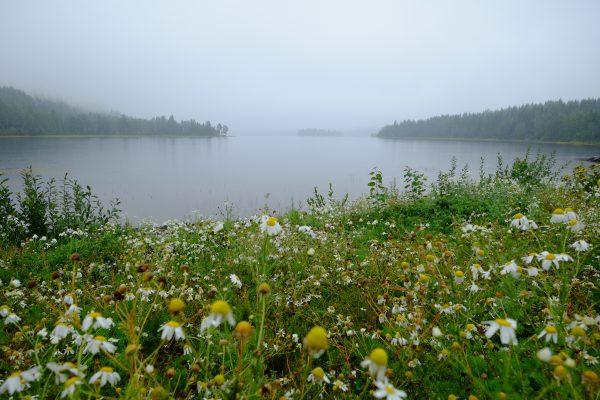 Un lac trouvé en cours de route lors d'un road trip en Suède