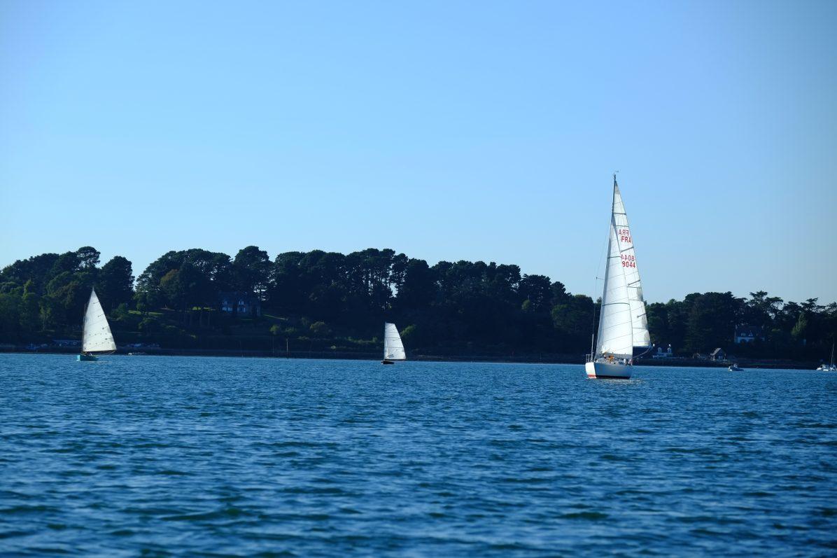 Une navigation bucolique dans le Golfe du Morbihan