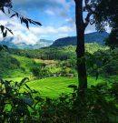 Visiter le Nord de la Thaïlande, un voyage confidentiel